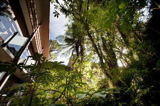 Hotel Te Waonui Forest Retreat