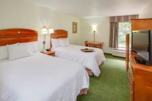 Hotel Hampton Inn Richmond-chester