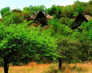 Hotel Tshukudu Bush Lodge