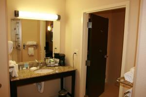 Hotel Hampton Inn And Suites Flint/g