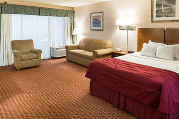 Hotel Holiday Inn Rochester-s (mayo