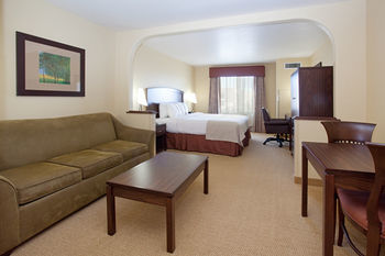 Hotel Holiday Inn Denver-parker-e470