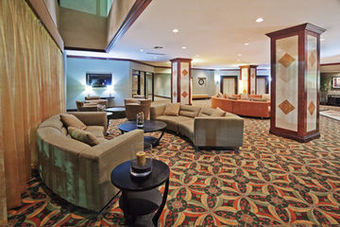 Hotel Holiday Inn Wichita Falls (at The Falls)