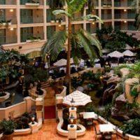 Hotel Sheraton Suites Cypress Creek