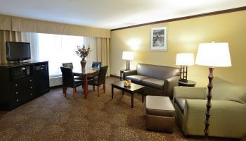 Hotel Holiday Inn Chicago Oakbrook