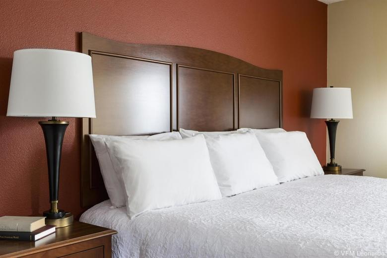 Hotel Hampton Inn Battle Creek