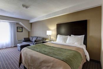 Hotel Comfort Inn Windsor