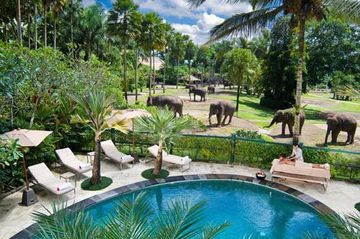 Hotel Elephant Safari Park Lodge