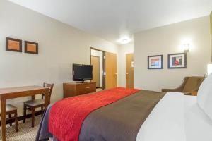 Hotel Comfort Inn & Suites San Francisco Airport West