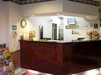 Hotel Comfort Inn (lacey)
