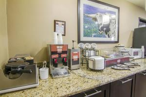 Hotel Comfort Inn & Suites Market Center