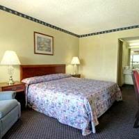 Hotel Days Inn Tampa North Tampa Busch Gardens Area Florida Fl