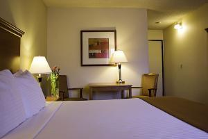 Hotel Best Western Airport Executel