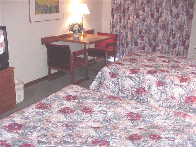 Hotel Comfort Inn Midtown Kingston - Standard Cb