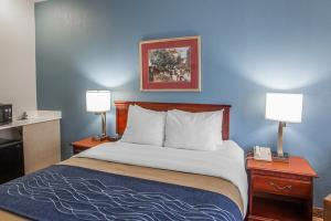 Hotel Comfort Inn & Suites Lees Summit -kansas City