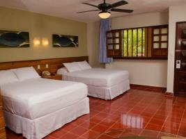 Hotel Suites Colonial