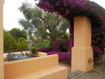 Bed & Breakfast Flegrea House - Casa Rosa