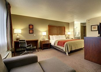 Hotel Comfort Inn Waverly