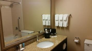 Hotel Crowne Plaza Dallas Market Center