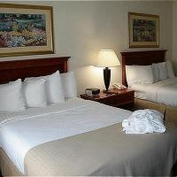 Hotel Holiday Inn Charlotte Airport