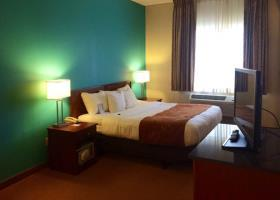 Hotel Comfort Suites O`hare Airport