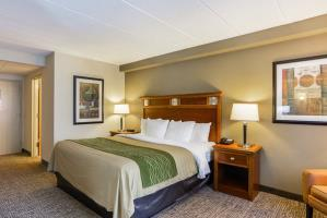 Hotel Comfort Inn Dulles International Airport