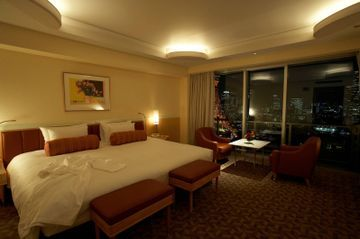 Hotel Prince Park Tower (superior)