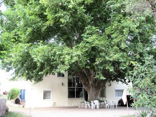 Bed & Breakfast Posada Del Arbol