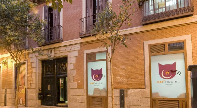 Hostal Cat's Hostel Madrid