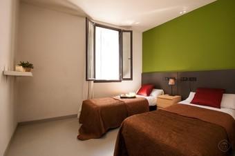 Hotel Barcelona - Gótic (apt. 411479)