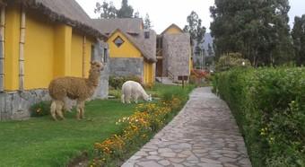 Hotel Eco Inn Colca