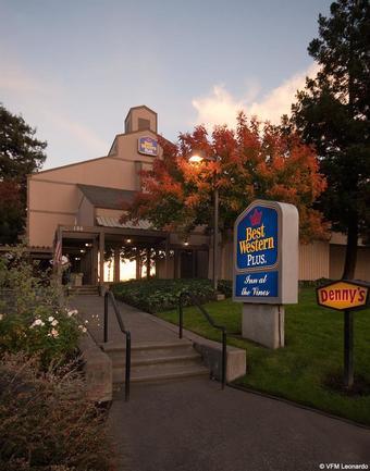 Hotel Best Western Inn At The Vines