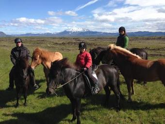Lodge Klara's Farm Holidays