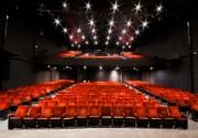 Entradas en Teatro Luigi Pirandello