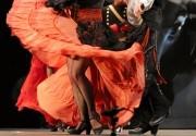 Actividades en Escuela de flamenco Elena Andujar