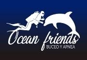 Actividades en Dive Center Ocean Friends