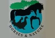Actividades en Horses and Nature (Molins de Rei)