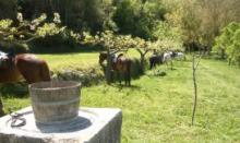 Actividades en Fundació Privada La Granja de Sitges